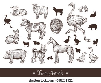 Farm animals handdrawn vintage set with cow, sheep, pig, horse, ostrich, guard dog, duck, rabbit, goose, turkey, lamb pork Thin line sketch and silhouettes vector illustration