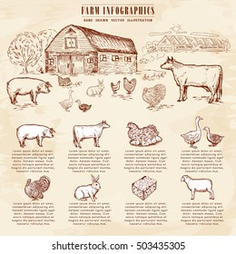 Farm animals infographics collection hand drawn vector