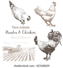 Farm animals set 4. Vector sketches of rooster, chicken and countryside on white background