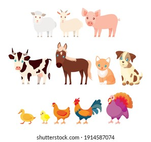 Farm animals set in cartoon style isolated on white background. Vector illustration. Cute animals collection: sheep, goat, pig, cow, horse, cat, dog, duck, chick, chicken, rooster, turkey.