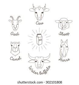 Farm animals simple avatars and farm products icons set with. Dairy animals icons collection.