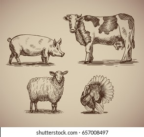 Farm animals in sketch style compilation. Vector illustration livestock drawn by hand. Cow, sheep, pig and turkey on gray background.