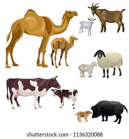 Farm animals and their kids. Camel, cow, goat, sheep and pig. Vector illustration isolated on white background