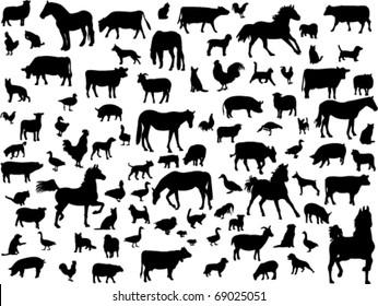 farm animals - vector