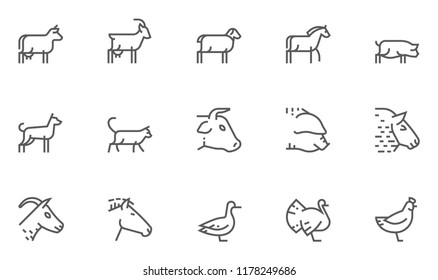 Farm Animals Vector Line Icons Set. Livestock, Poultry, Animal Husbandry, Cattle Breeding. Editable Stroke. 48x48 Pixel Perfect.