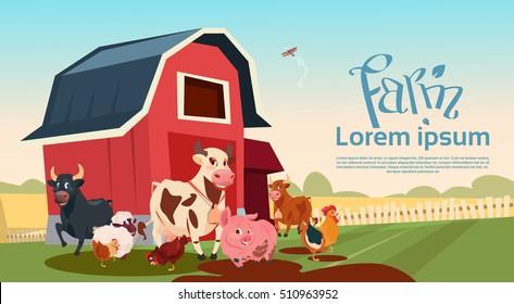 Farm Breeding Animals Farmland Background Flat Vector Illustration