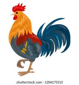 Farm cock icon. Cartoon of farm cock vector icon for web design isolated on white background