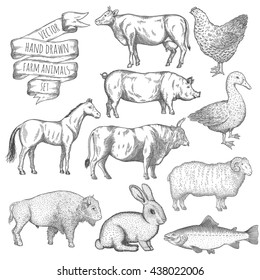 Farm collection. Hand drawn isolated illustrations.
