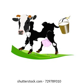 Farm cow with bucket of fresh milk