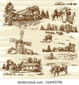 Farm, cows, rural landscape - hand drawn set