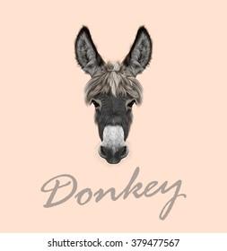 Farm Donkey portrait. Vector illustrated portrait of grey Donkey on pink background.