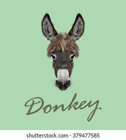 Farm Donkey portrait. Vector illustrated portrait of brown Donkey on green background.
