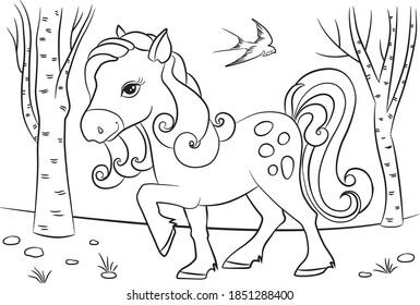 Farm drawing. Horse vector. Foal coloring book