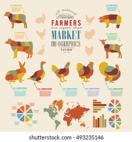 Farm infographics farm animals chickens, cows, sheep, goats, geese, turkeys design elements of livestock infographics vector illustration