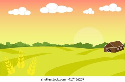 Farm landscape. Farm landscape with barn illustration. Field wheat background. Farm sunrise background. Vector illustration