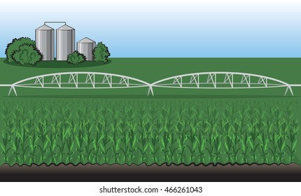 Farm Landscape with Corn Field and Silos Vector Illustration