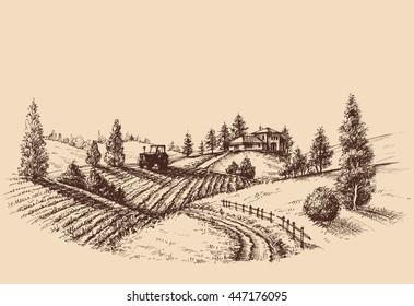 Farm landscape etch, agriculture scene