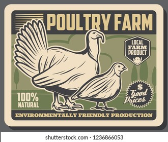Farm market retro poster, poultry meat products from farm. Vector vintage design of premium quality natural meat of turkey, chicken hen and quail