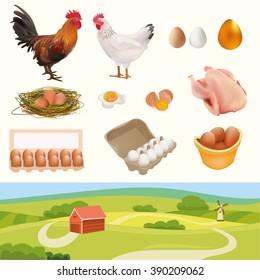 Farm Set with Rooster, Hen, Chicken, Nest, White, Orange, Golden Eggs, Broken Egg, Omelette, and Landscape. Isolated On White Background Vector Illustration. Feather Products