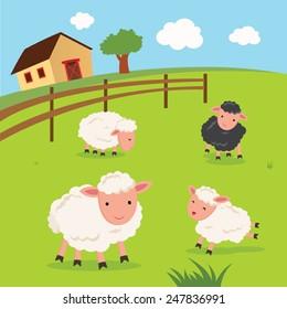 Farm. Sheep and farmhouse.
