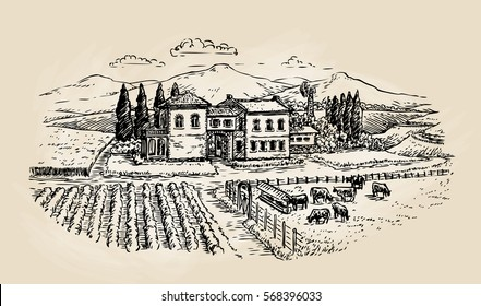Farm sketch. Farming, agriculture, vineyard or animal husbandry. Vector illustration