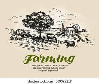 Farm sketch. Rural landscape, agriculture, farming vector illustration