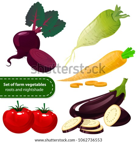 Farm Vegetables Fresh Organic Agricultural Products Stock Vector