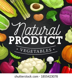 Farm vegetables vector frame border on chalkboard. Cartoon fresh pepper, cabbage, broccoli and onion, pea, corn, mushroom and cauliflower, asparagus, avocado, pumpkin and potato, eggplant and beet