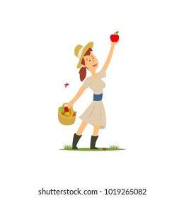 Farmer collecting apples. vector illustration