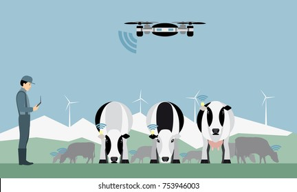 Farmer with drone counts cows. Robot shepherd. Internet of things in agriculture. Vector illustration