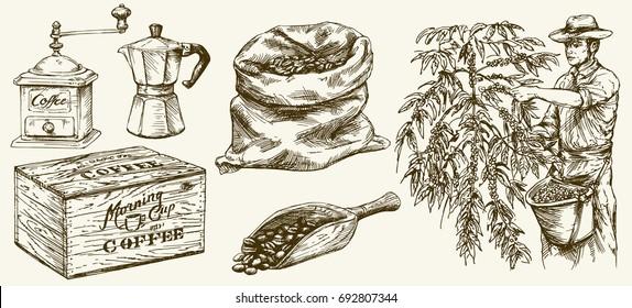 Bauer, der Kaffeebohnen pflückt. Canvas-Beutel und Messer, Schleifmaschine. Handgezeichnet.