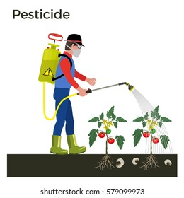 Farmer sprays pesticide. Vector illustration