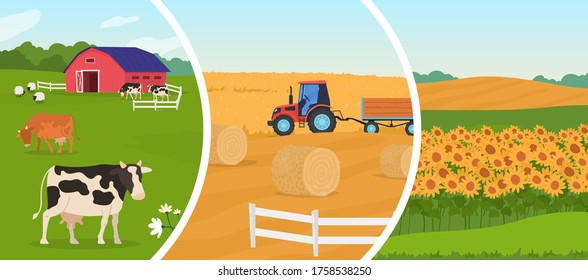 Farming agriculture vector illustration. Cartoon flat agricultural set with herd of animal sheep cows in cattle farm, wheat harvesting farmer tractor, rural farmfield with growing sunflowers harvest