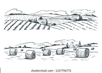 Farming fields landscape, vector sketch illustration. Agriculture and harvesting vintage background. Rural nature view.