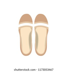 Fashion vector womens shoes. Image of a pair of female shoes on a white background.