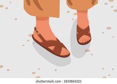 Fashionable woman street strap sandals. Female feet in stylish elegant flat sole open toe footwear. Pair of summer street style brown footgear. Vector cartoon illustration