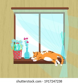 Fat red cat sleeping on the windowsill, spring illustration, flowers in glass vases, daisies in a bucket, vector illustration in cartoon style, flat.