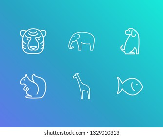 Fauna icon set and fish with giraffe, squirrel and tiger. Seafood related fauna icon vector for web UI logo design.