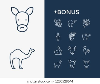 Fauna icon set and snake with bull, donkey and sheep. Cock related fauna icon vector for web UI logo design.