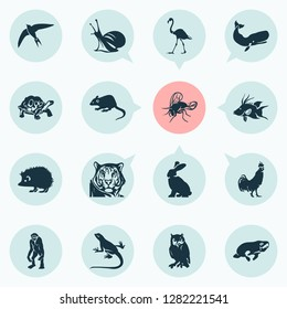Fauna icons set with cachalote, seacow, swift and other bunny elements. Isolated vector illustration fauna icons.