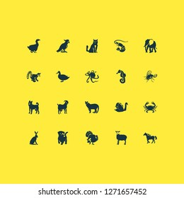Fauna icons set with cockatoo, swan, duck and other parrot elements. Isolated vector illustration fauna icons.