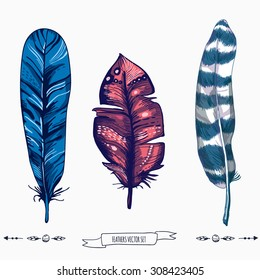 Feather bird set, vintage ethnic handmade illustration, vector design. Hand painted elements for design, sketch style, hand drawing line art template for card, scrapbook, events