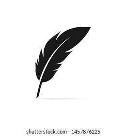 feather, illustration, isolated on white background - Vector