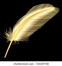 Feather isolated on black.Vector illustration.