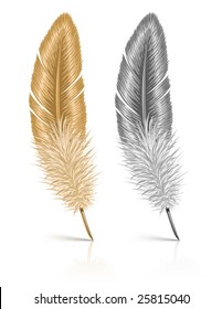 feather isolated on white background - vector illustration