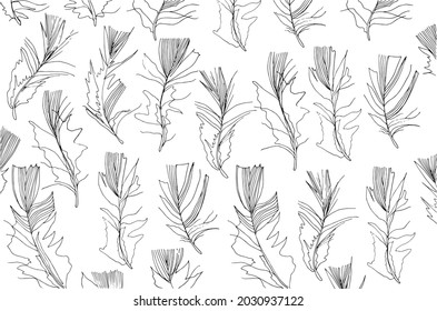 Feather line art black and white horizontal pattern