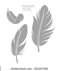 Feather. Silhouette. Abstract feathers on white background. Vector illustration