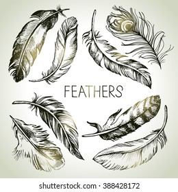 Feather sketch set. Hand drawn vector illustrations