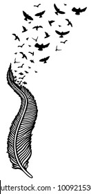 Feather with swarm of birds. Symbol of hope.
