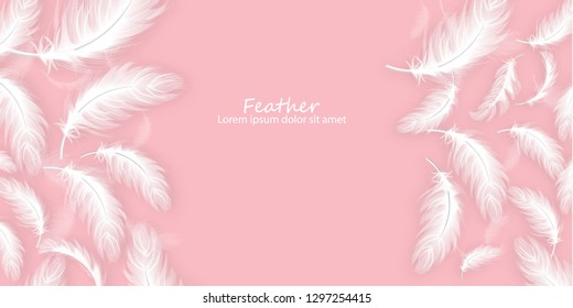 Feathers background Vector realistic. White feathers on pink card template